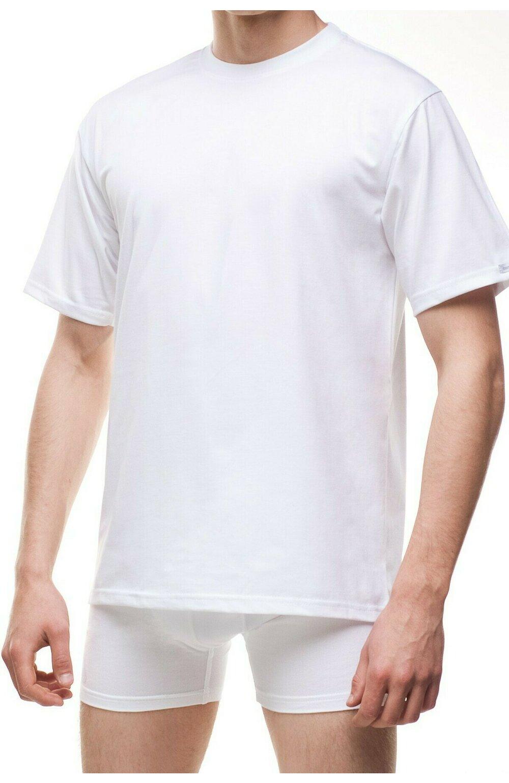 Tricou pentru barbati Authentic M202 Plus