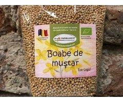 ECO BOABE DE MUSTAR GALBEN 170 GR