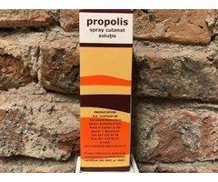 SPRAY PROPOLIS INSTITUT APICOL- 50ML