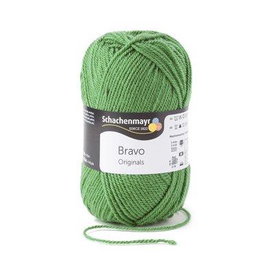 Acrylic yarn Bravo- Fern 08191