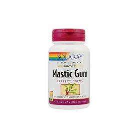 Mastic Gum, 500 mg, 45 capsule
