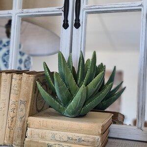 Aloy Planta artificila mica, Ceramica, Verde