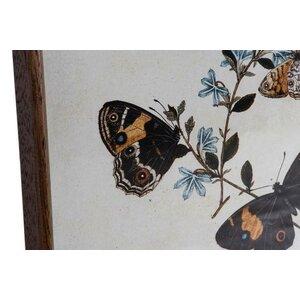 Butterfly Set 4 tablouri cu fluturi, Lemn, Multicolor
