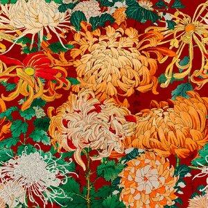 Chrysanthemums  Set 3 role tapet, Netesut, Multicolor