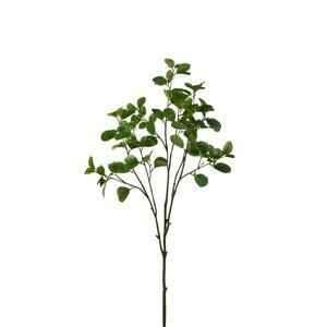Citrus Floare artificiala, Plastic, Verde