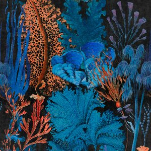 Coral Reef Ultramarine Set 3 role tapet, Netesut, Multicolor
