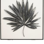Leaf Point Decoratiune perete, Metal, Negru