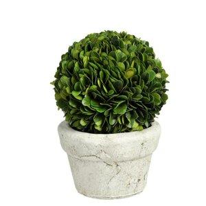 Mandi Floare artificiala in ghiveci, Plastic, Verde