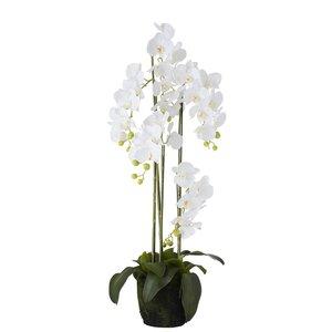 Orhidee Floare artificiala ghiveci mare, Plastic, Alb